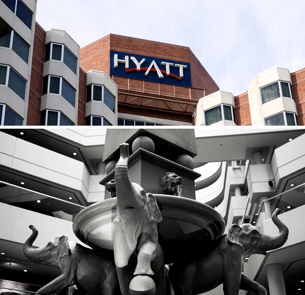 Hyatt-elephants
