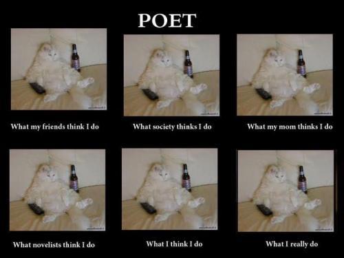 Poet Cat