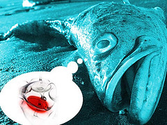 pescadoyvinobaja[1]