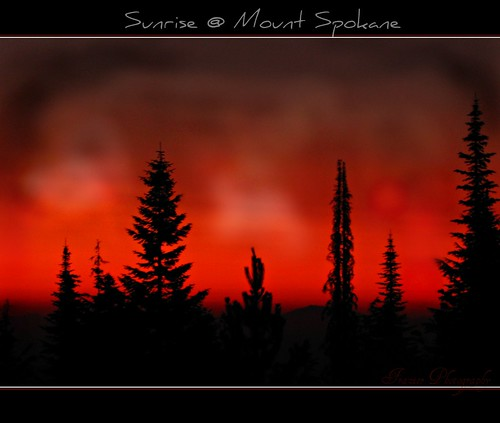 Sunrise @ Mt. Spokane