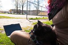 365: 2012/04/13 - outside