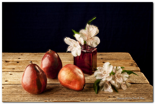 flowers stilllife food flower color art floral beautiful fruit canon studio pears dramatic study fullframe drama softbox fill foodphotography cutflowers freshflowers redpears tonemapped canonef50mmf25macro canon5dmkii glixpix quartzlight kevindrenz barnwoodtable pearsflowers kevinrenz kdrenz