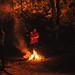 noche larga by protocultura