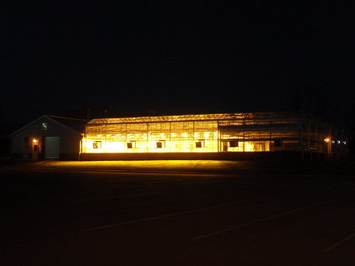 lighted greenhouse