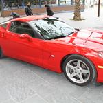 corvette 030