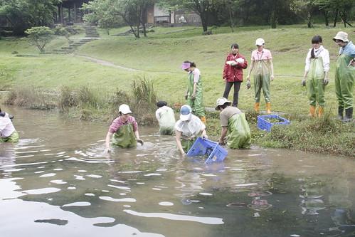 志工在老師帶領下清除水蘊草