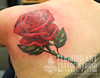 Large rose tattoo Tattooed by Johnny