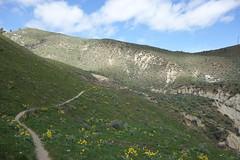 Sage Hills.