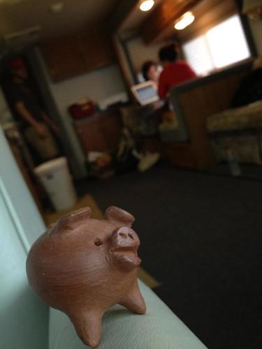 Pig on Set