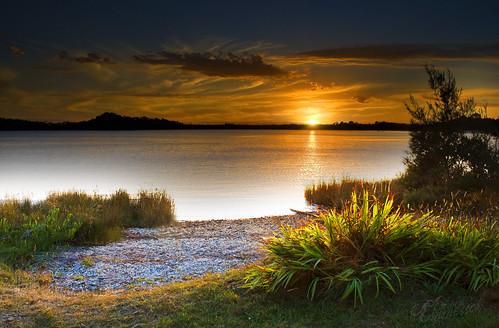 light sunset sky plants cloud grass weather nikon sundown tasmania edwin strahan d60 emmerick edwinemmerick godronriver