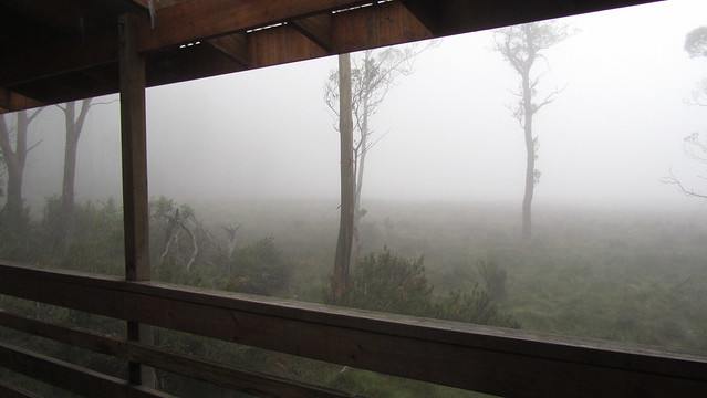Day 4: Woke to find myself surrounded by mist.