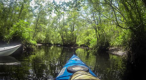New River Paddling-90