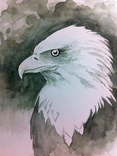 Bald Eagle WIP 2 60 mins