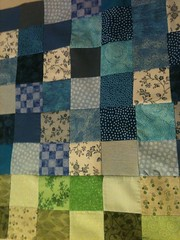Project QUILTING Entry from Pat Lester
