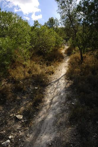 Montnegre de Dalt