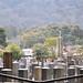 Arashiyama 嵐山 - 06