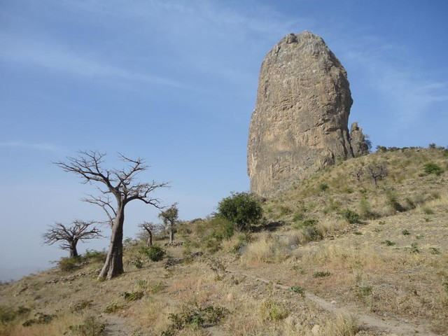 Landscape with baobab and peak