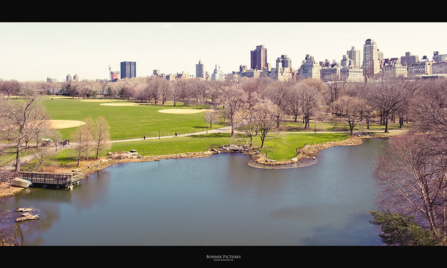 [ Central Park ]