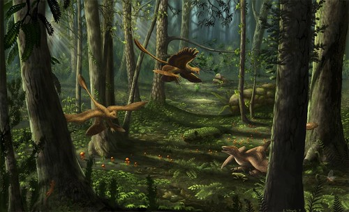 liaoning_scene__microraptor_and_sinornithosaurus_by_ferahgo_the_assassin-d4ewoj5