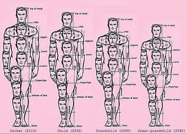 height and genetics