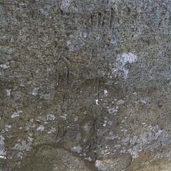 狛犬探訪 馬込北野神社の銘を再確認 明治三年歳在庚午 喜久月吉辰 と読める