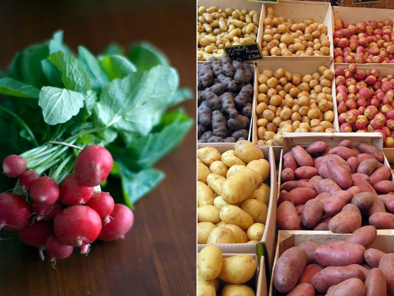 Rabanetes e batatas // Radishes & Potatoes