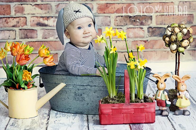 zdjęcia dzieci Toruń- witek