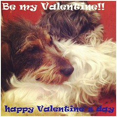 Happy valentine's day by Buany