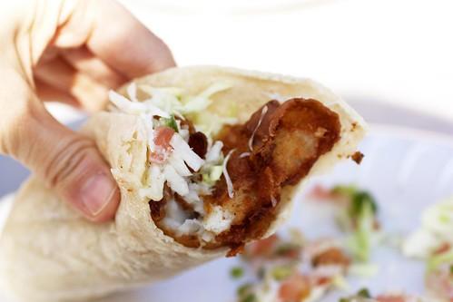 fish taco @ ricky's fish tacos
