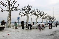 A seasonal tourist attraction? Lac Léman Ice Storm, Versoix, February 2012