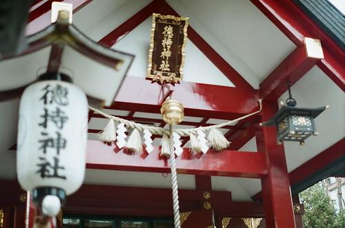 2012-0126-pentax-sl-fuji-xtra400-012