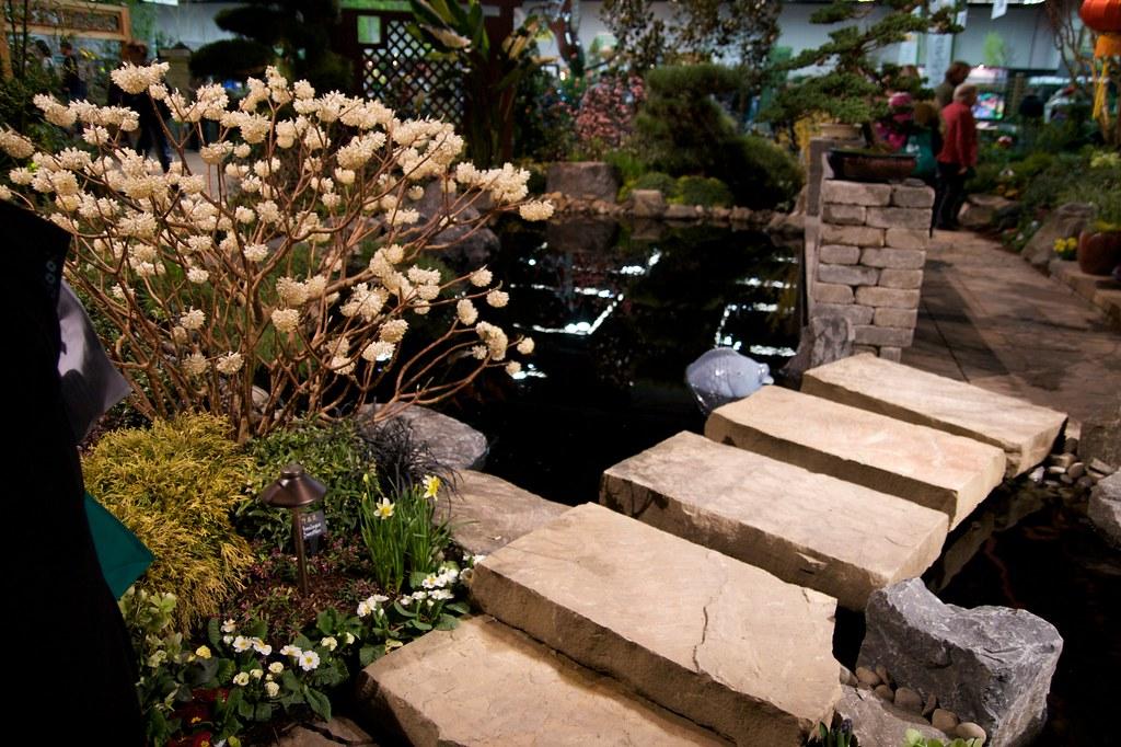 asian garden  1249