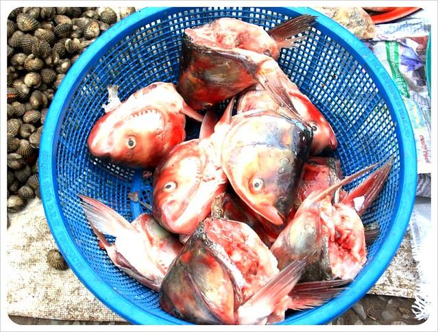 morning market fish