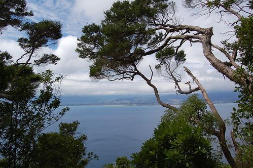 View from Kapiti Island