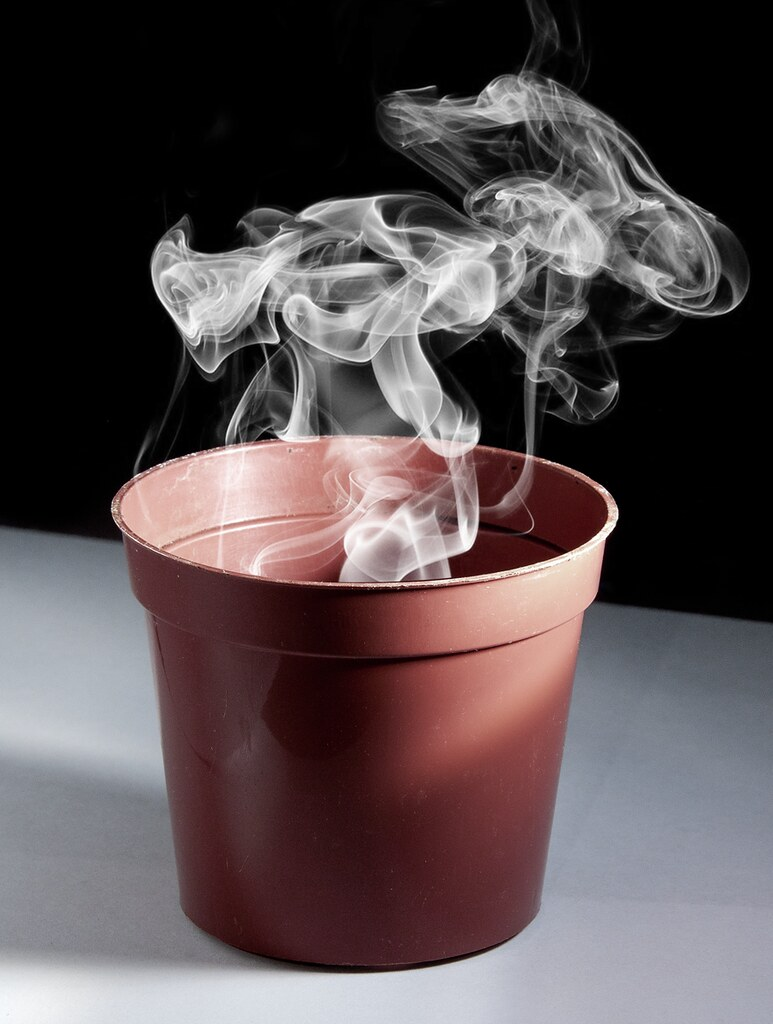 Smoking Pot