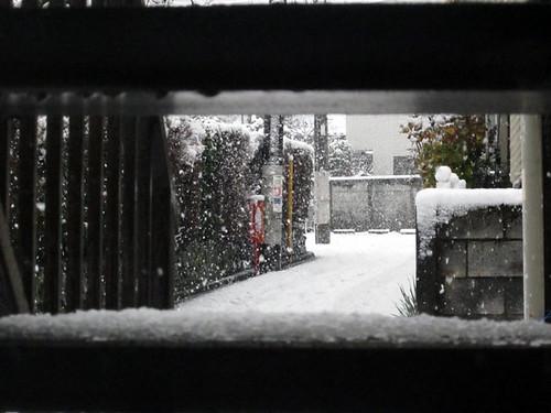 Gran nevada en Tokyo 29 febrero 2012