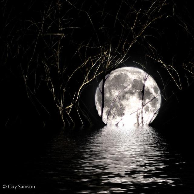 Bad Moon On The Water / Une lumière sur l'eau