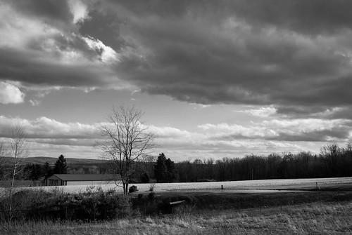 Farm Pond | 28 | 2.8 | #17