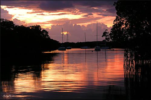 light sunset sky sunlight reflection water clouds boats island golden bay puertorico sailboats mangroves laparguera