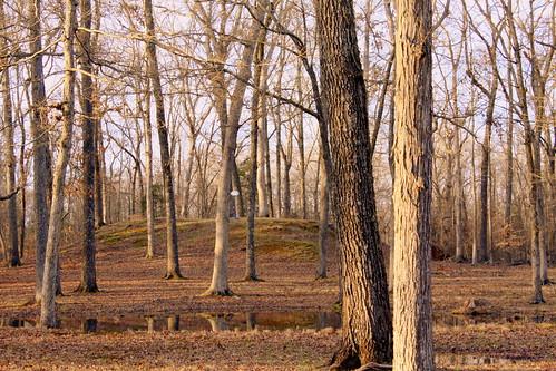 shiloh hardincounty tn tennessee shilohindianmoundssite shilohnationalmilitarypark indianmound archaeologicalsite nationalhistoriclandmark nrhp bmok