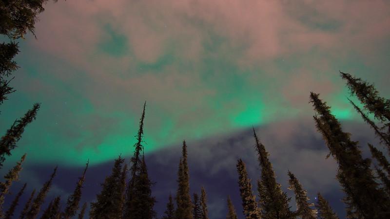 Painted-night-sky