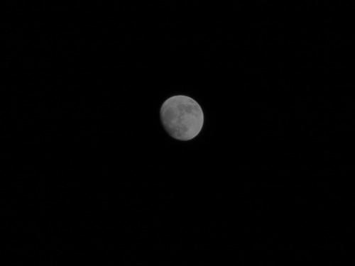 13 moon