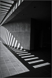 Striped Shadow Play