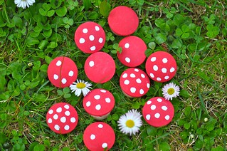 Polka Dots Mushrooms