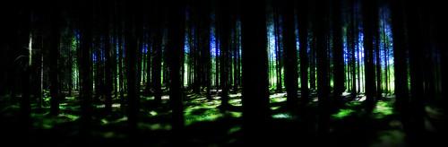 A glimpse of light  (on explore april 28th. 2013)