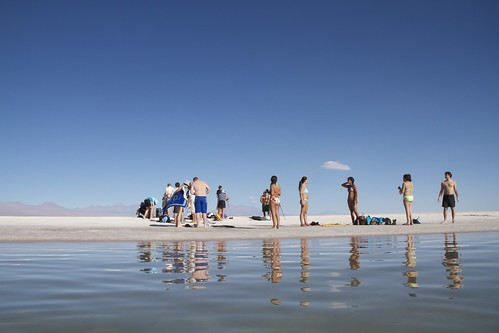 """All Types"" at the Salt Lake at San Pedro de Atacama - Chile"