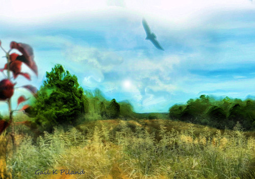 sky sun texture grass rural painting landscape view vista fields gailpiland photographyforrecreation rememberthatmomentlevel1