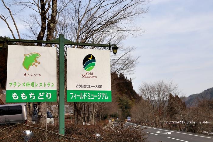 20130307_ToyamaJapan_3290 f