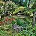 Portland Japanese Garden (10) by mharrsch