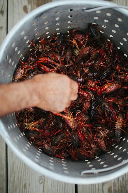 Louisiana + Tabasco Tastemakers Trip | the year in food